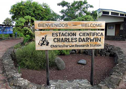 An overview of the galapagos islands by herman melville and charles darwin