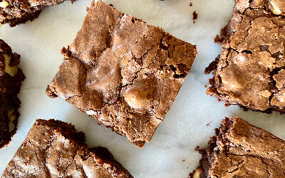Walnut Brownies U.S.A.