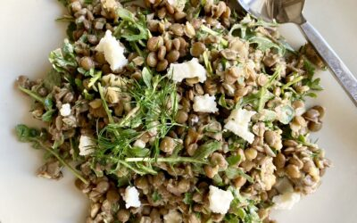 Herbed Lentil Salad with Walnuts and Goat Cheese
